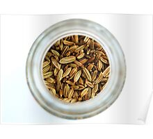 Closeup Aromatic Exotic Striped Indian Cuisine Fennel Seeds Jar Poster