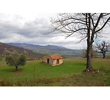 Trees and Old Hut in Tuscany  Photographic Print