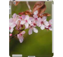 Pink Apple Blossom iPad Case/Skin
