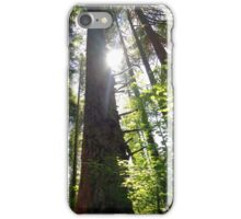 Old Growth iPhone Case/Skin