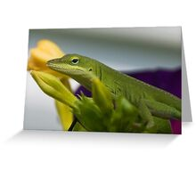 Color Coordination Greeting Card