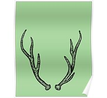 Green 7 point Antlers Poster
