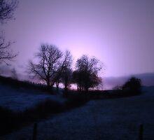 Lilac Wine by justlinda