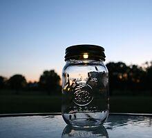 Lightning Bugs in a Mason Jar by Stephanie  Wiese