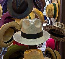 Panama Hats Are Made In Ecuador II by Al Bourassa