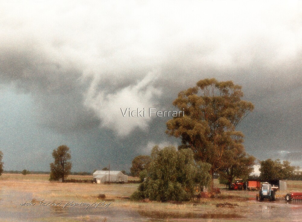 Albert Rain Storm © Vicki Ferrari Photography by Vicki Ferrari