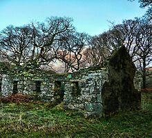 Celtic Ruin by Brett Williams