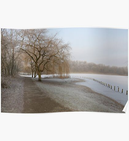 Weeping Willow Over Frozen Lake Poster