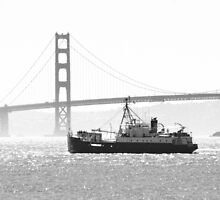Golden Gate in Black and White by savapavo