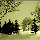 January evening by snowbird