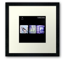Boards Of Canada - In A Beautiful Place Out In The Country Framed Print