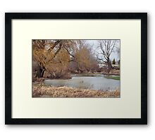 Willow in the wind Framed Print