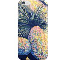 Dragoon Boulders  iPhone Case/Skin