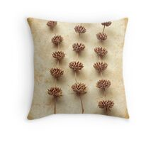 Dried Sage Throw Pillow