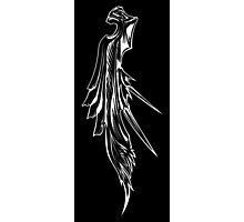 Sephiroth's wing Photographic Print