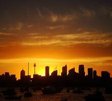 Calmness over Sydney  by Of Land & Ocean - Samantha Goode