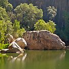 Pool in Windjana Gorge National Park. WA by johnrf