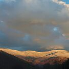 Blue ridge snow by Forrest Tainio