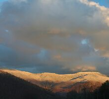 Blue ridge snow by Forrest Tainio