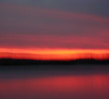 Moving Sunset by Tammy Serdiuk
