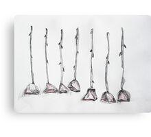 Seven Roses Canvas Print