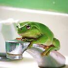 Who's Sink? by Lindsay Woolnough (Oram)