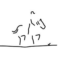 dressage horse rider by lineamentum