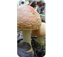 Mommy & Baby Mushrooms iPhone Case/Skin