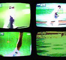 Cricket by Tim21