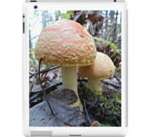 Mommy & Baby Mushrooms iPad Case/Skin