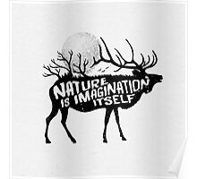 Nature is imagination itself Poster