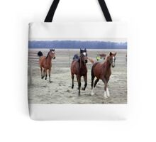 Running Colts Tote Bag