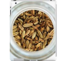 Closeup Aromatic Exotic Striped Indian Cuisine Fennel Seeds Jar iPad Case/Skin