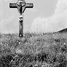 Black Forest Cross 1999 by yaytractor