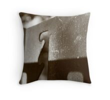 Lines & Curves, Light & Shadow Throw Pillow