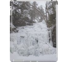 Snowstorm at Ganoga iPad Case/Skin