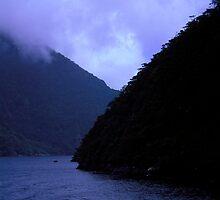 Milford Sound  by Aneurysm