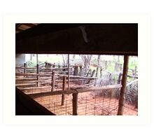 Shearing shed perspective Art Print