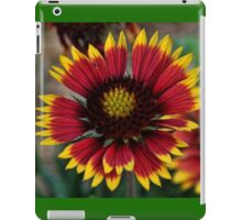 Indian Blanket Square iPad Case/Skin