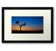 Zip-A-Tree-Doo-Dah Framed Print