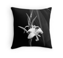 Canna Lily in Black & White Throw Pillow