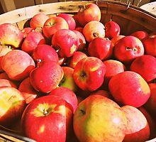 Bayfield Apples  by saucyapple