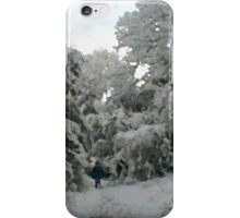Winter Wonderland 1of6 iPhone Case/Skin