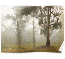 Wilberforce Morning Mist © Vicki Ferrari Poster