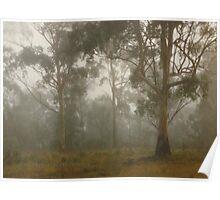Wilberforce Morning Fog © Vicki Ferrari Poster