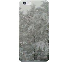 Winter Wonderland 4of6 iPhone Case/Skin