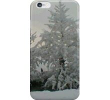 Winter Wonderland 5of6 iPhone Case/Skin