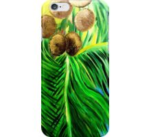 Co-Co-NuTS iPhone Case/Skin