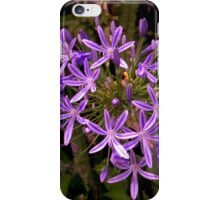 Agapanthus in all their glory,  growing in the wild..........! iPhone Case/Skin