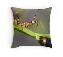 Ladybug playing hide and seek with a spider Throw Pillow